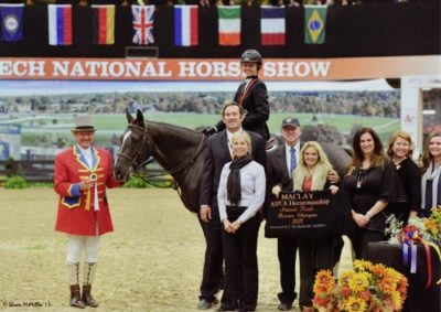 Demi Steigler and Vigo Reserve Champion ASPCA Finals 2011 National Horse Show Photo Shawn McMillen