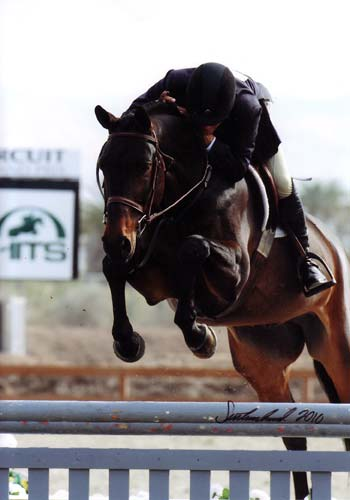 John French and Victory Road owned by Ashley Pryde 2010 HITS Desert Circuit Champion First Year Green Hunters Photo Flying Horse