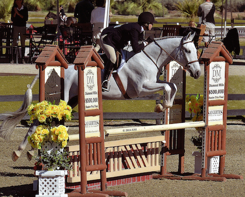 "Karin Binz and Walnut Creek Amateur Owner 3'3"" Hunter 2014 National Sunshine Series Photo ESI"