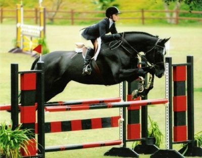 Nicole Husky has joined Brookway Stables each Fall Successfully competes in the USEF Medal Finals and the ASPCA Maclay Finals
