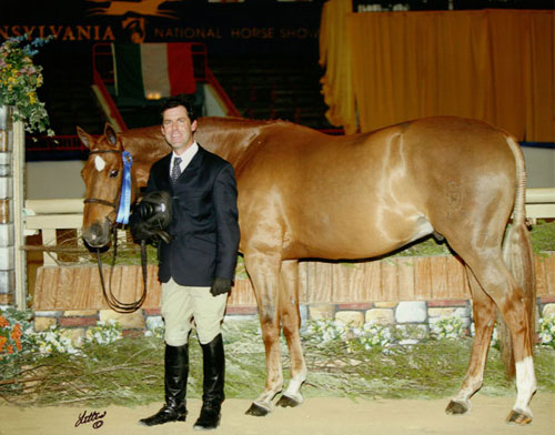 Peter Lombardo and Mandarin owned by Jane Fraze Regular Conformation Hunter 2008 Pennsylvania National Photo Anne K Gittens