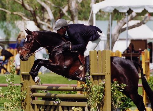 Archie Cox and Smitten Oaks Blenheim 2008 Photo Cathrin Cammett