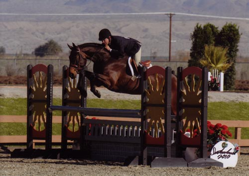 John French and After Five owned by Stephanie Danhakl 1st Year Green Working Hunters 2010 HITS Desert Circuit Photo Flying Horse