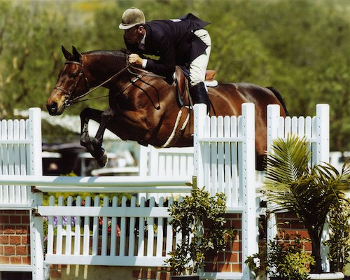 Montana Coady's Chance ridden by Archie Cox Regular Working Hunter 2005 Oaks Blenheim Photo by JumpShot