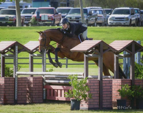 Virginia Fout and Classified Amateur Owner Hunter 36 and Over 2014 Blenheim June Classic Photo Amy McCool