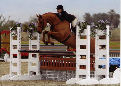 Ashley Pryde and Pringle Champion Small Junior Hunters 16-17 2010 HITS Desert Circuit IV Photo Flying Horse