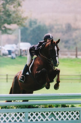 Lucy Davis and Galatea owned by Old Oak Farm Small Junior Hunters 2008 Oaks Blenheim Summer Photo Cathrin Cammett