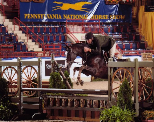 "Stephanie Danhakl's Match Point ridden by Archie Cox 3'3"" Pregreen Hunter 2014 Pennsylvania National Photo Al Cook"