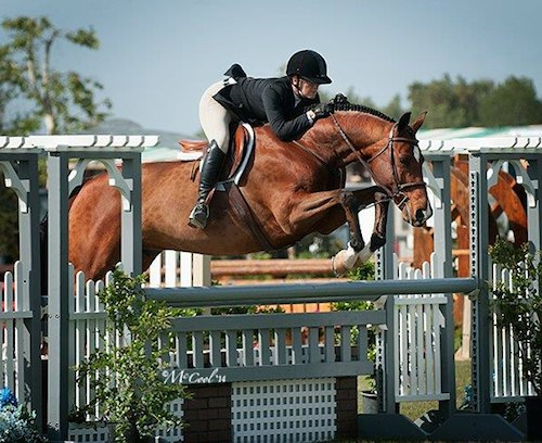 Gina Ross and Beckham Amateur Owner Hunter 2014 Blenheim Spring Photo Amy McCool