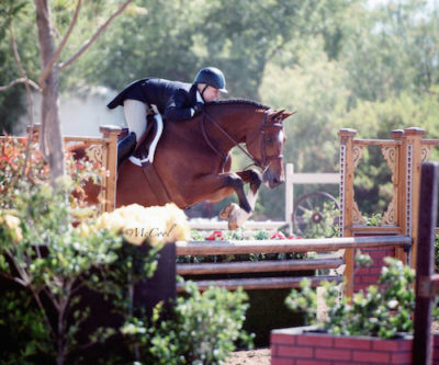 Virginia Fout and Cristiano Amateur Owner Hunter 2015 Blenheim June Classic Photo Amy McCool