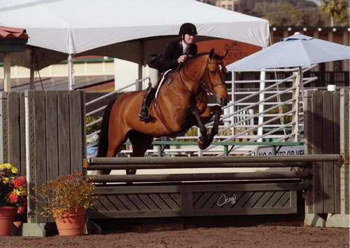 "Jenny Ross and Piper owned by Sylvia OConnor 3'3"" Performance Hunter 2012 Del Mar National Photo Osteen"