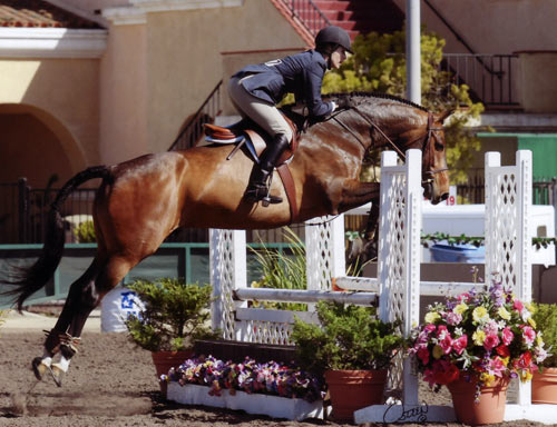 Joan Hasteltine and Biltmore PCHA Adult Equitation 2010 Del Mar National Photo Osteen
