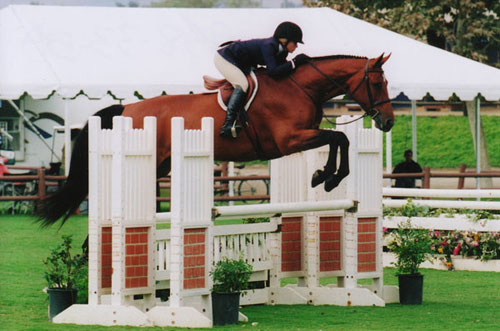 Teddi Mellencamp and Piper owned by Sylvia OConnor 1st Year Green Hunters Oaks Blenheim Summer 2008 Photo Cathrin Cammett