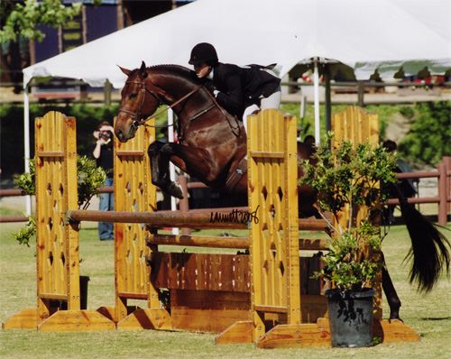Tina Dilandri and Capone Oaks Blenheim 2008 Photo Cathrin Cammett