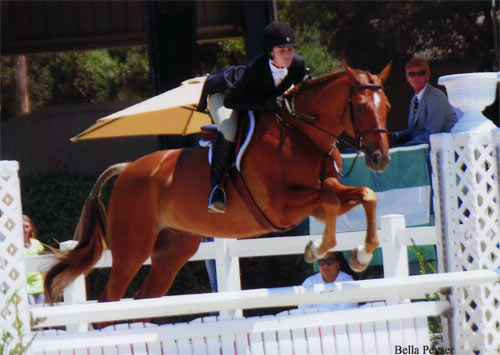 Jessica Singer and Cabo Z Adult Hunter 18-25 2012 Menlo Charity Photo Bella Peyser