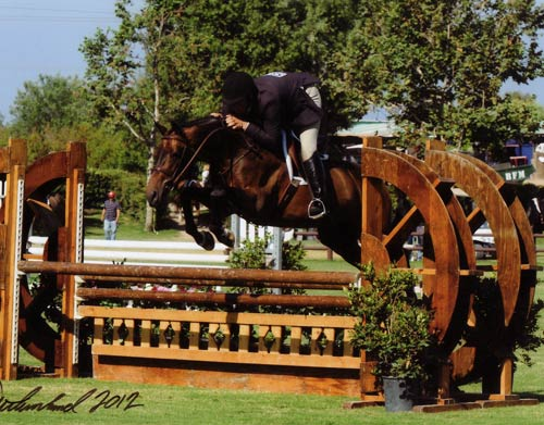 Victory Road and Kingsley owned by Richard Boh Champion First Year Green Hunter 2012 Blenheim Photo Flying Horse