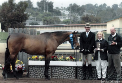 Archie Cox and Chance Showdown Perpetual Trophy Winner and Regular Conformation Stake Class Winner 2005 Del Mar National Photo Ed Moore
