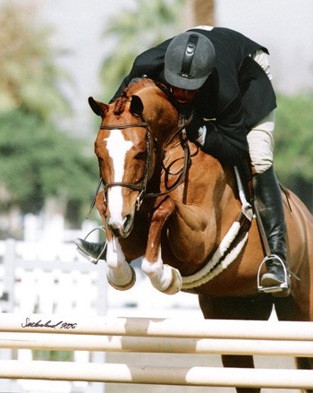 Archie Cox and Red Panda Champion 2006 HITS Desert Circuit Photo Flying Horse