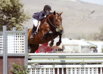 Ashley Pryde and Chaucer Reserve Champion Small Junior Hunters 16-17 2009 Blenheim Photo Captured Moment