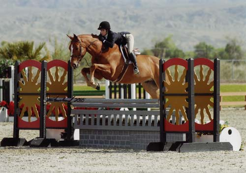 Gabbi Langston and Azian owned by Fastball Farm Circuit Champion Large Junior Hunters 16-17 2010 HITS Desert Circuit Photo Flying Horse
