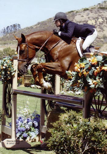 Jamie Krauss and Querido owned by Emma Gerber Regular Conformation Hunter 2010 Blenheim Photo Captured Moment Photography