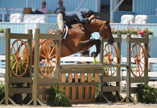 Laura Wasserman's Boss ridden by John French 1st Year Green Hunter 2015 Devon Horse Show Photo The Book LLC