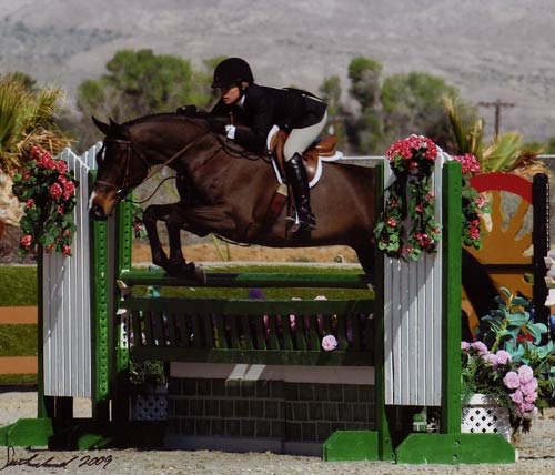 Teddi Mellencamp on All That Jazz owned by Rudy Leone Mid-Circuit Reserve Champion Regular Conformation Hunters 2009 HITS Desert Circuit Photo Flying Horse