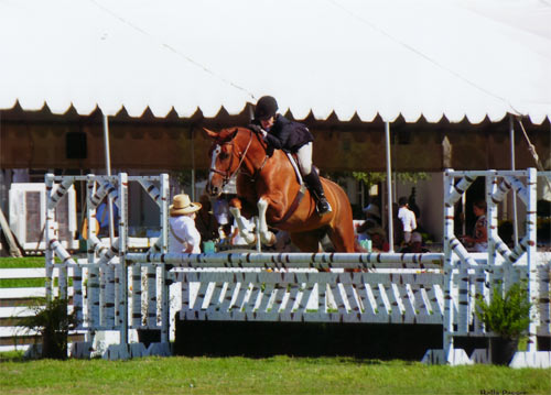 Polly Sweeney and Duet A/O Hunter 36 & Over 2012 Menlo Charity Photo Bella Peyser