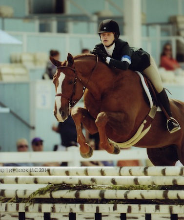 Hunter Siebel and Lennon owned by Mountain Home Stables Small Junior Hunter 15 & Under 2014 Devon Horse Show Photo The Book LLC