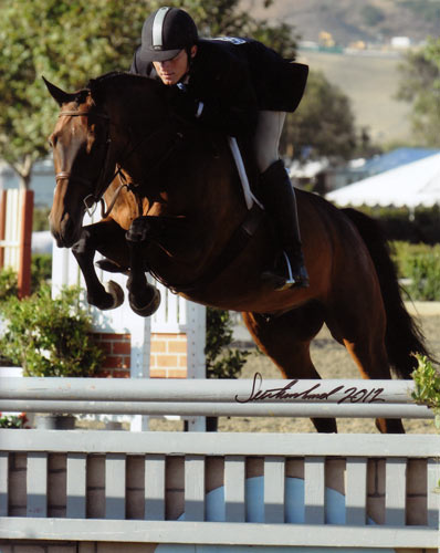 Richard Boh and Kingsley Amateur Owner Hunter 18–35 2012 Blenheim Photo Flying Horse