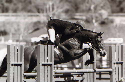 Archie Cox and White Oak Oaks Blenheim 2008 Photo Cathrin Cammett