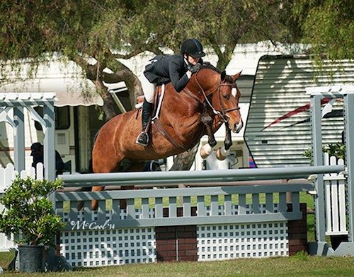 Gina Ross and Beckham Amateur Owner Hunter 2014 Blenheim Spring Photo McCool