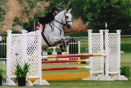 Zoie Nagelhout and Mon Amie Equitation Champion Oaks Blenheim Summer 2008 Photo Cathrin Cammett