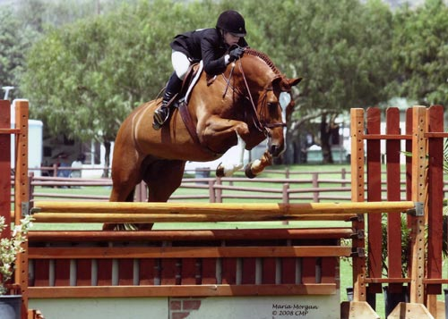 Ashley Pryde and Wesley Champion Small Junior Hunters 15 & Under 2008 Blenheim Summer Classic Photo Captured Moment