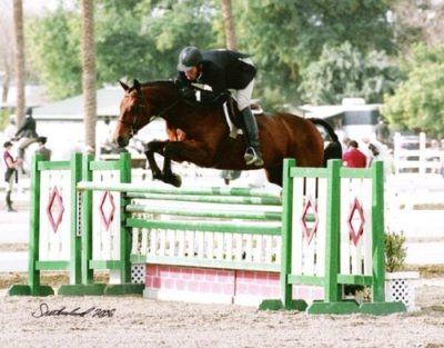 Archie Cox and Out of Bounds owned by Joan Hasteltine 2006 HITS Desert Circuit 2nd Year Green Working Hunters and Regular Conformation Hunters Photo Flying Horse