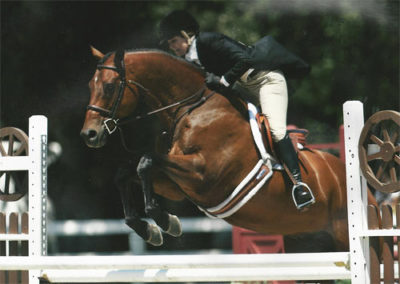 Ecole Lathrop and Classified Adult Amateur Hunter 34-45 2013 Menlo Charity Photo JumpShot
