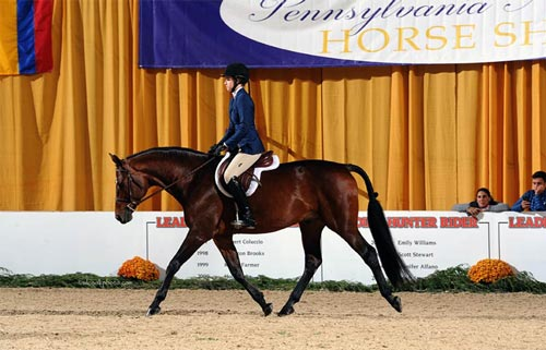 Katherine Dash and Laura Wasserman's Boss Champion Small Junior Hunters 16-17 2016 Pennsylvania National Photo Al Cook