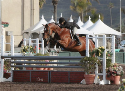 Laura Wasserman and Back in the Game Champion Amateur Owner 36 & Over 2013 Del Mar National Photo Osteen