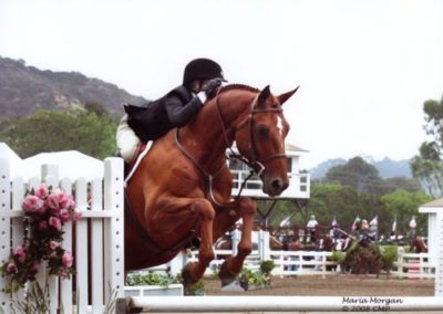 Ashley Pryde and Pringle Champion Small Junior Hunters 2008 Showpark Photo Captured Moment