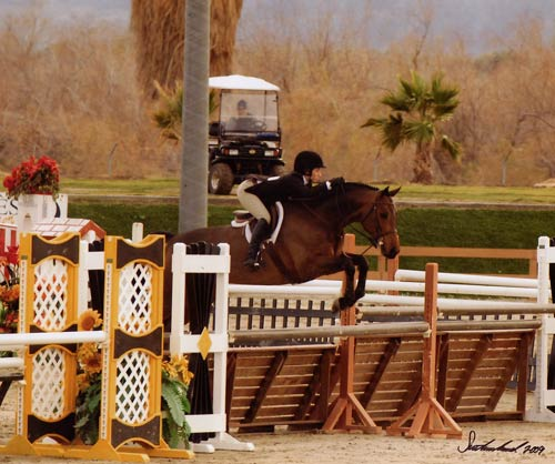 Cayla Richards on Capone owned by Stephanie Danhakl Circuit Champion Small Junior Hunters 2009 HITS Desert Circuit Photo Flying Horse