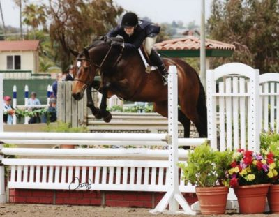 Lucy Davis and Harmony owned by Old Oak Farm Large Junior Hunter 2009 Del Mar National Photo Osteen