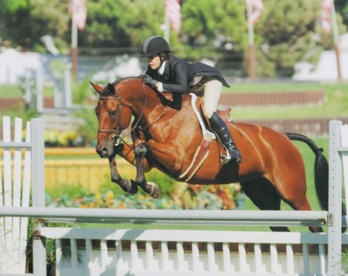 Shelby Wakeman and My Cap owned by Archie Cox (pictured here – Kim McCormack) Zone 10 Champion Small Junior 16-17 2007 USEF National Junior Hunter Finals West Coast Photo by Jumpshot