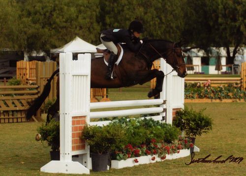 Teddi Mellencamp and All That Jazz owned by Archie Cox Regular Conformation Hunters 2009 Blenheim Spring Classic III Photo Flying Horse