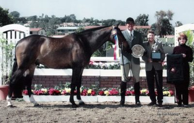 Archie Cox and Call Me Champion Green Hunter and Winner Couldn't Resist Perpetual Trophy 2003 Del Mar National Photo Ed Moore