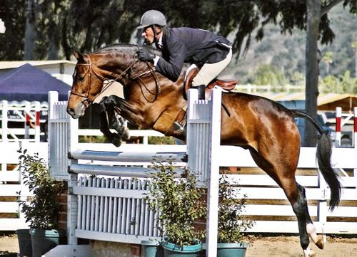 Archie Cox and Quality Time owned by Laura Wasserman 2007 Del Mar National Photo Ed Moore