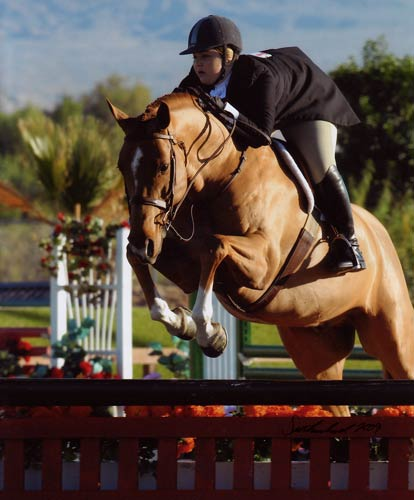 Chelsea Samuels and Brooklyn Reserve Champion Amateur/Owner Hunters 2009 HITS Desert Circuit Photo Flying Horse