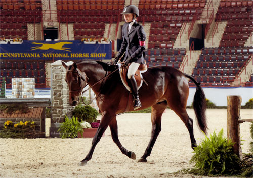 Emma Gerber and Stay Tuned Small Junior Hunter 16-17 2012 Pennsylvania National Photo Al Cook