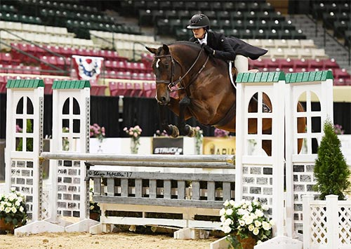 "Lindsay Maxwell and Baranus Amateur Owner Hunter 3'6"" 2017 Capital Challenge Photo by McMillen"