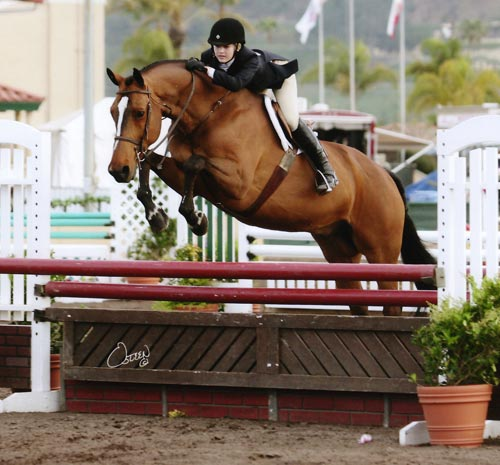 Lucy Davis on Overseas owned by Laura Wasserman Large Junior Hunter 2009 Del Mar National Photo Osteen