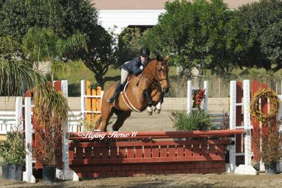 Pops Panda and Teddi Mellencamp owned by Lisa Stoway Pregreen Hunter 2011 Los Angeles National Photo Flying Horse